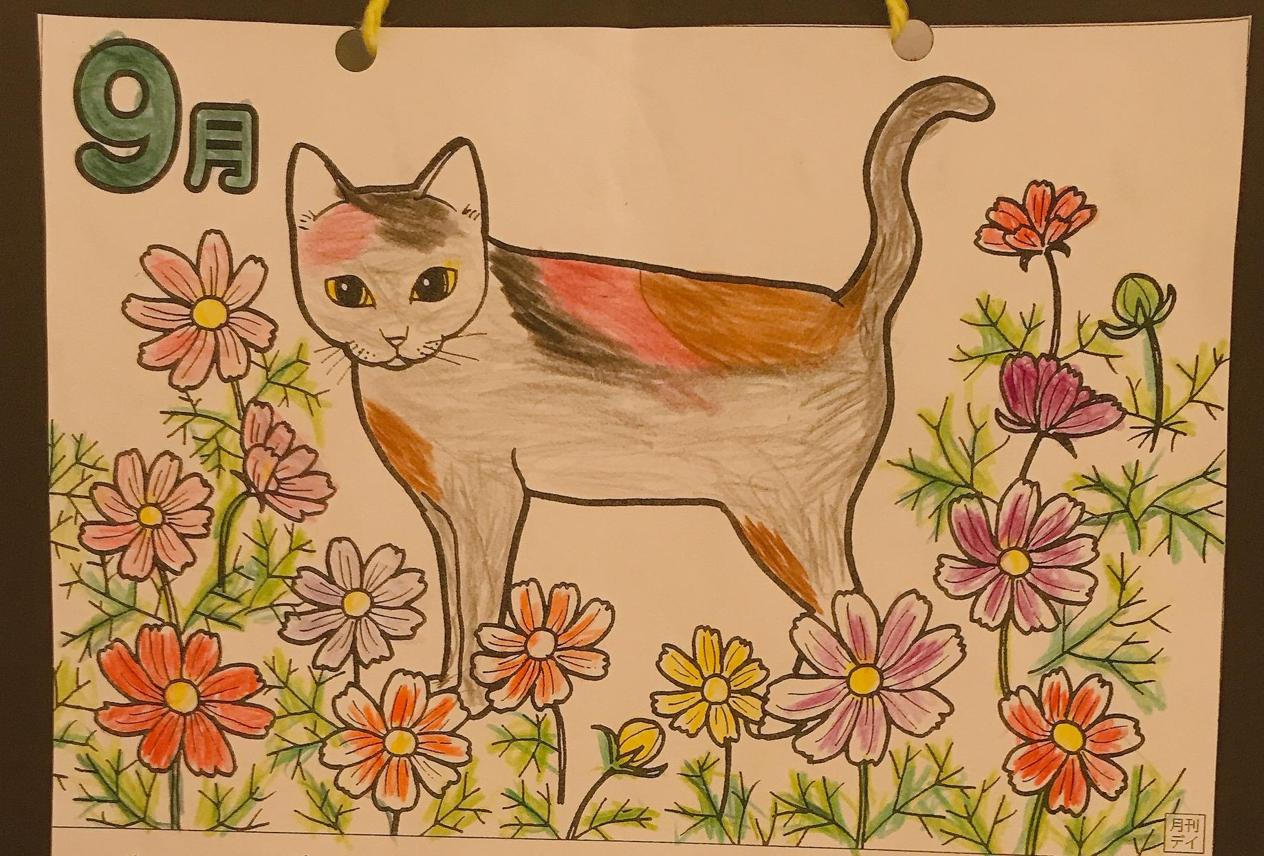 9月、猫とお花✨
