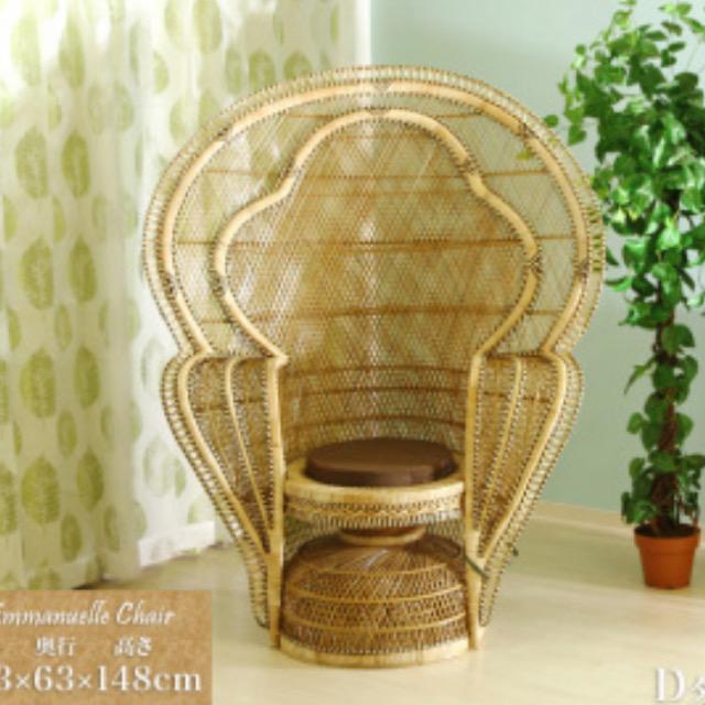 マハラジャの椅子が当院に…⁈