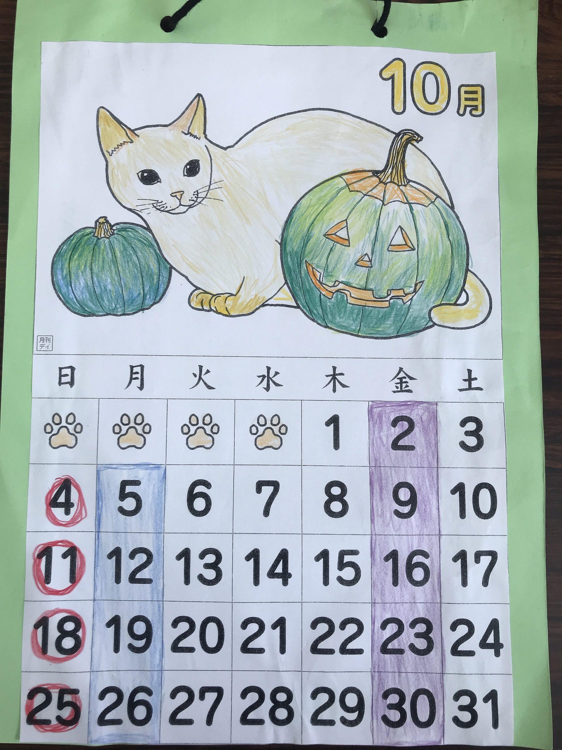 10月の猫とお花✨